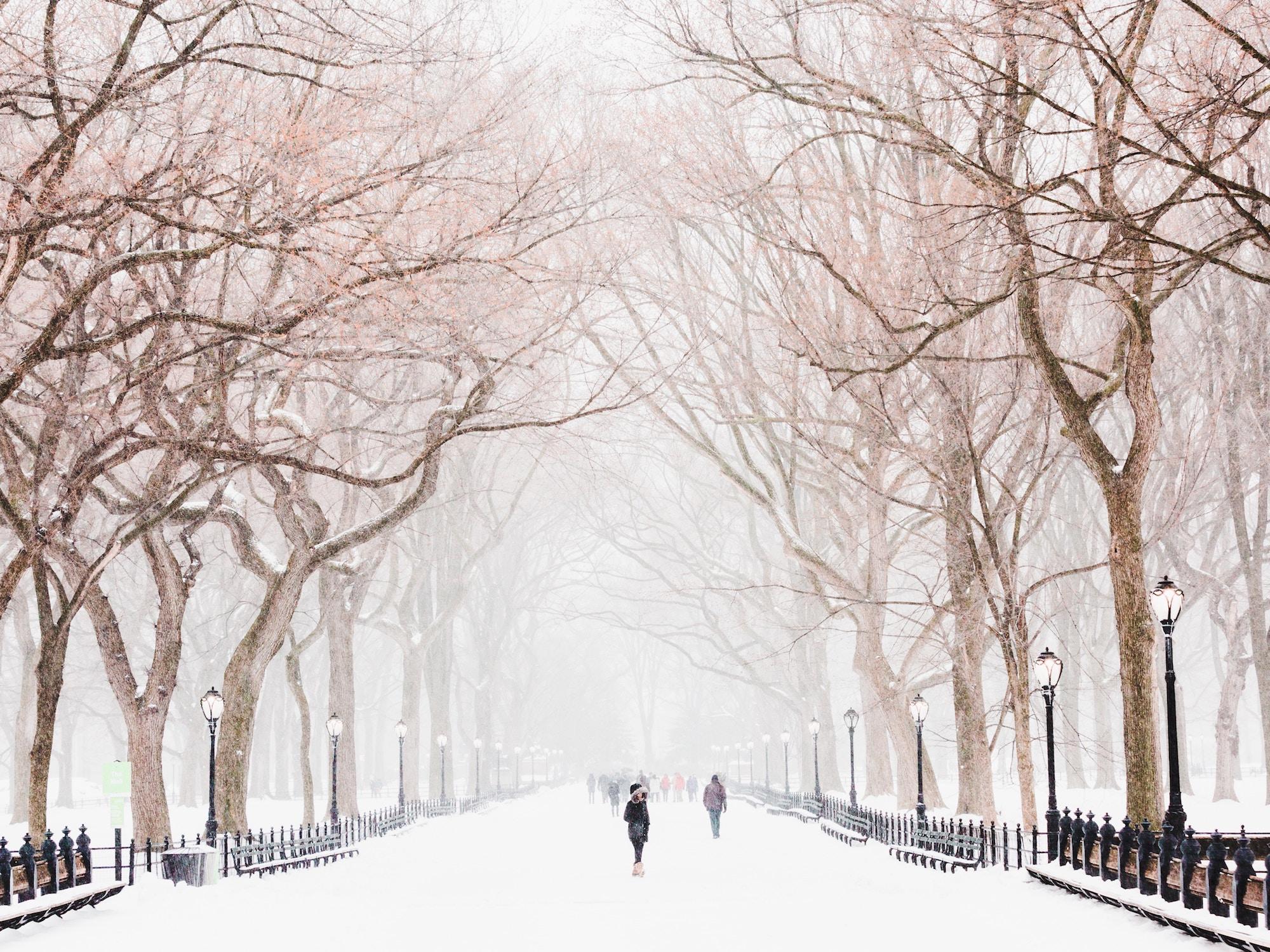 winter storm illustration